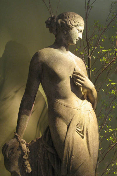 Photograph - Statuesque by Jessica Jenney
