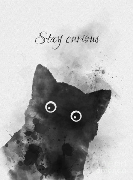 White Cat Mixed Media - Stay Curious by My Inspiration