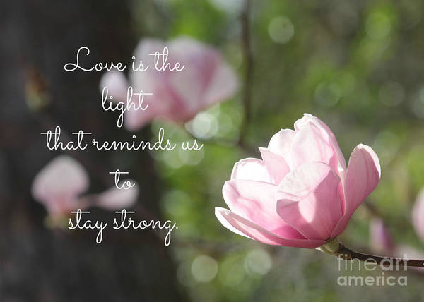 Photograph - Stay Strong by Carol Groenen