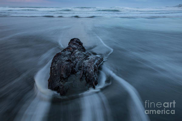 West Bay Digital Art - Steadfast by Phil Dyer