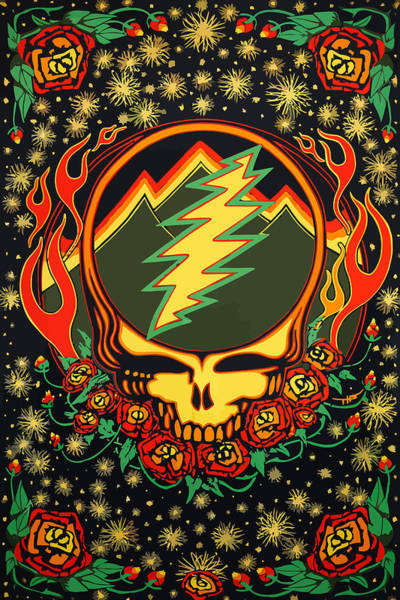 Wall Art - Digital Art - Steal Your Face Special Edition by The Steal
