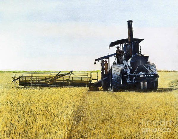 Photograph - Steam Harvester, 1903 by Granger