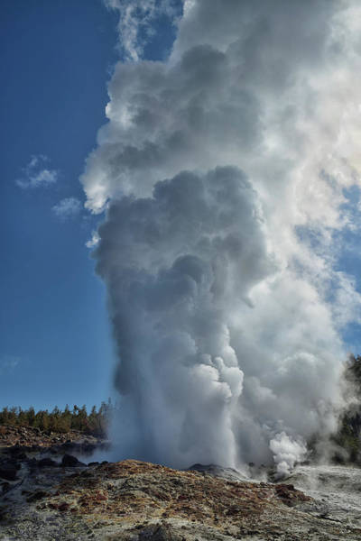 Photograph - Steamboat Geyser by Greg Norrell