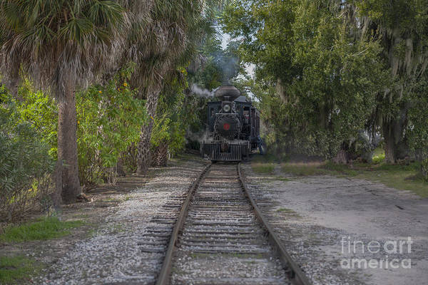 Photograph - Steaming Down The Tracks by Dale Powell