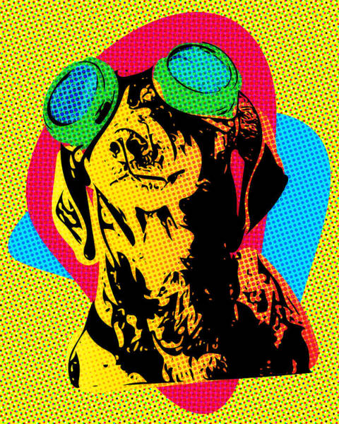 Digital Art - Steampunk Dachshund Pop Art by SR Green