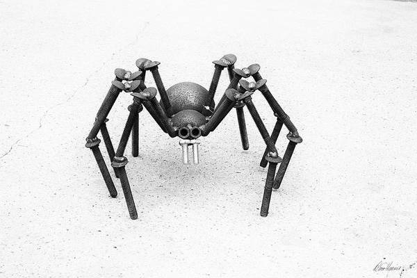 Photograph - Steampunk Spider by Diana Haronis