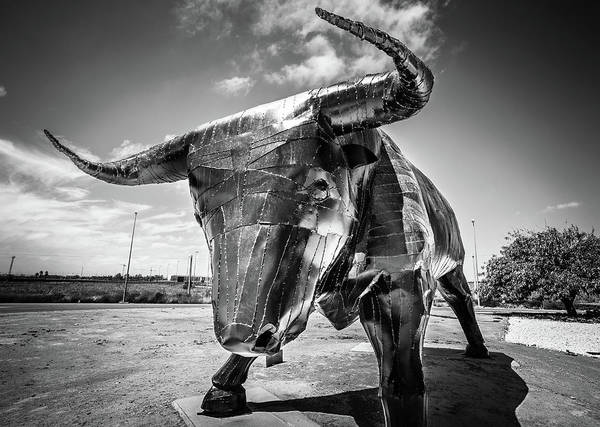 Photograph - Steel Bull Statue by Gary Gillette
