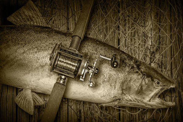 Chinook Salmon Photograph - Steelhead Trout Catch In Sepia by Randall Nyhof