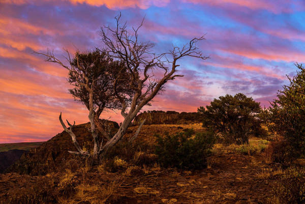 Photograph - Steens Mountain Sky Show by Robert Potts
