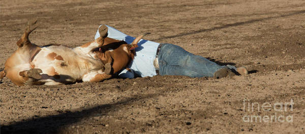 Photograph - Steer Wrestling by Jim West