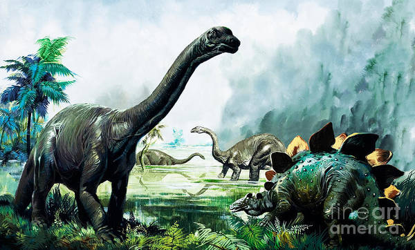 Wall Art - Painting - Stegosaurus, Brachiosaurus,  Prehistoric Animals by David Nockels