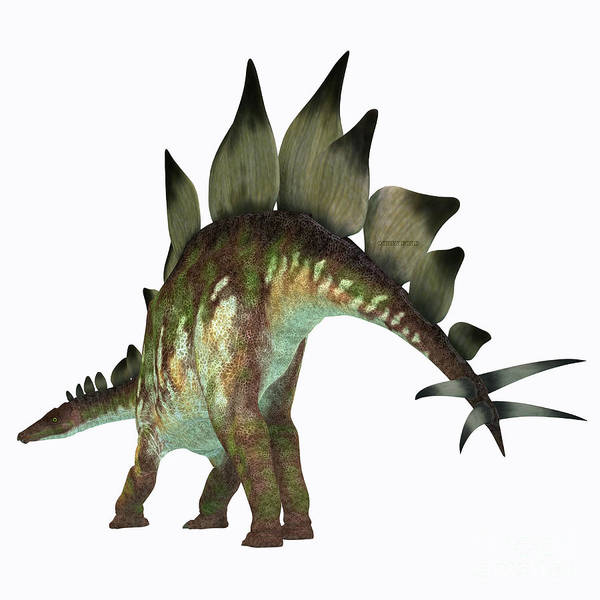 Primeval Painting - Stegosaurus Dinosaur Tail by Corey Ford