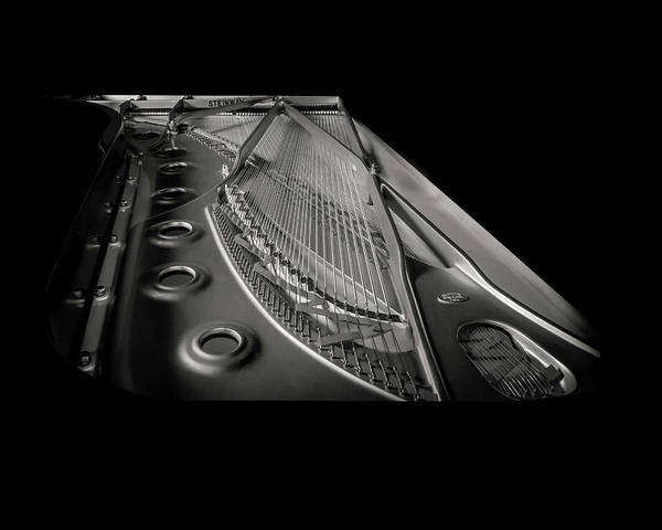 Photograph - Steinway Guts Bw by Adam Reinhart