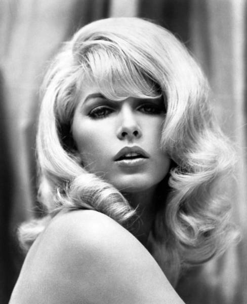 Movie Photograph - Stella Stevens, C. 1966 by Everett