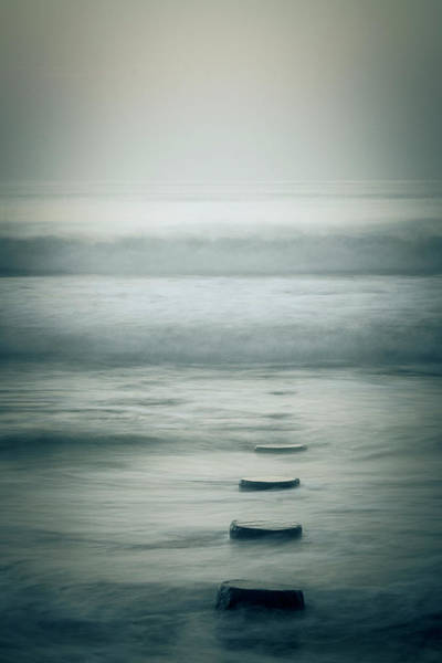 Robinson Photograph - Step Forward by Nicole Robinson