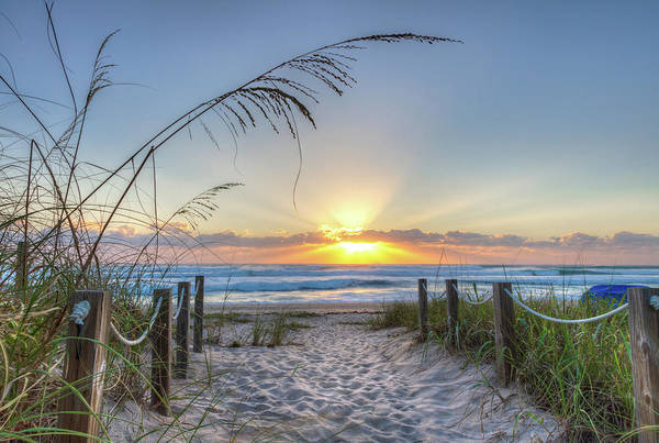 Photograph - Step Into Paradise by Debra and Dave Vanderlaan