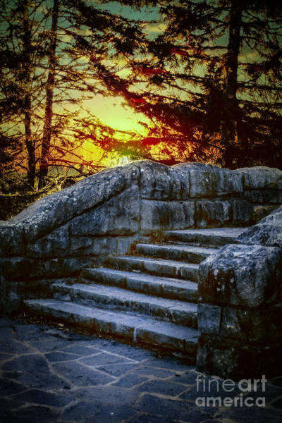 Photograph - Step Into The Sunset by Mechala Matthews