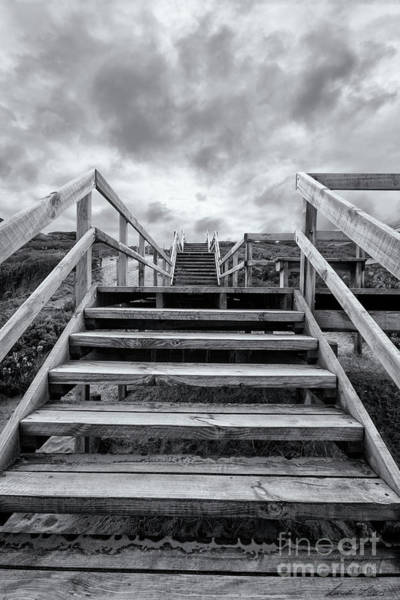 Wall Art - Photograph - Step On Up by Linda Lees
