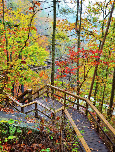 Photograph - Steps To The Gorge by Susan Leggett