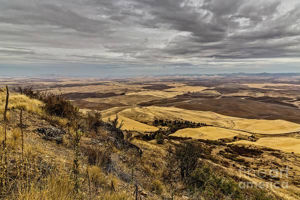 Photograph - Steptoe Wheat Country by Jon Burch Photography