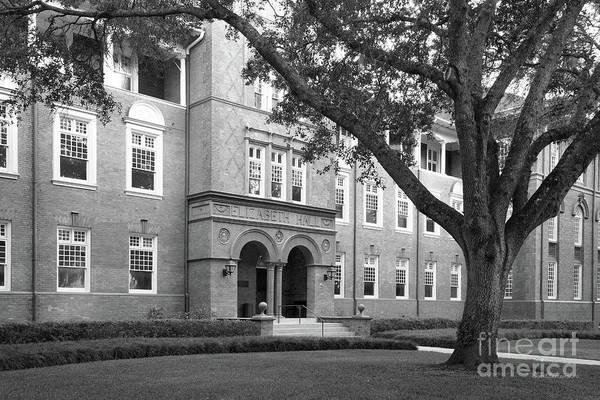 Photograph - Stetson University Elizabeth Hall by University Icons