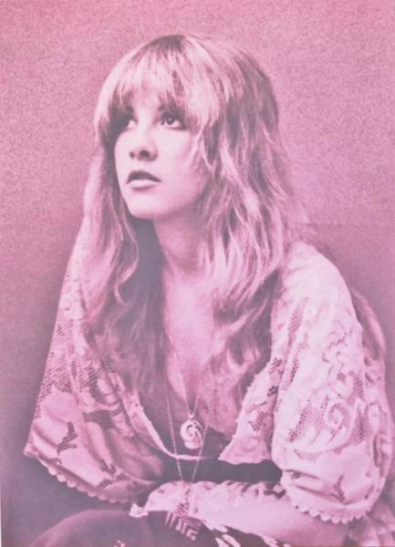 Stevie Nicks Photograph - Stevie Nicks In Dusty Pink by Donna Wilson