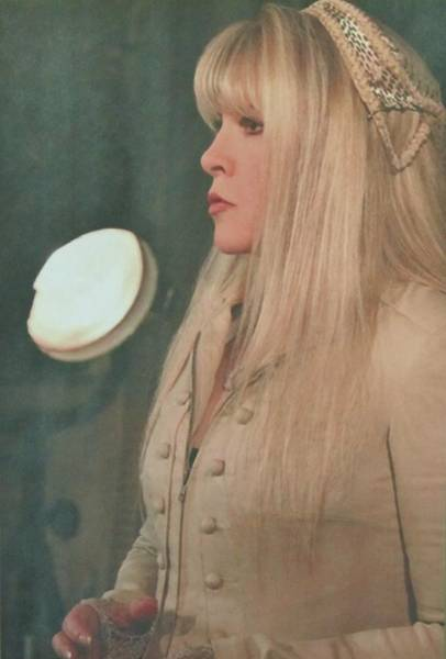 Stevie Nicks Photograph - Stevie Nicks In Profile by Donna Wilson