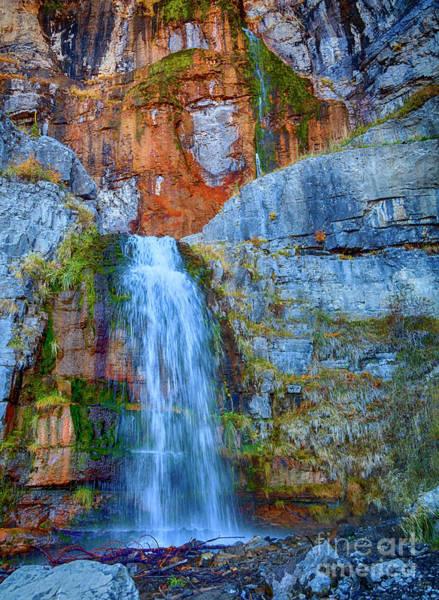 Photograph - Stewart Falls by David Millenheft