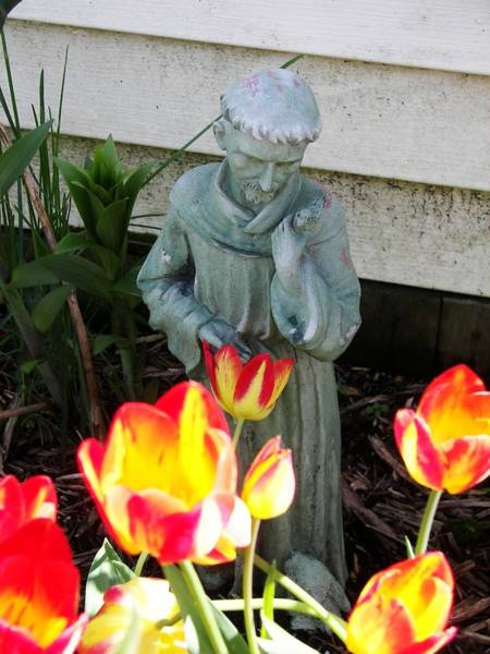 Wall Art - Photograph - St.francis by Judy Via-Wolff