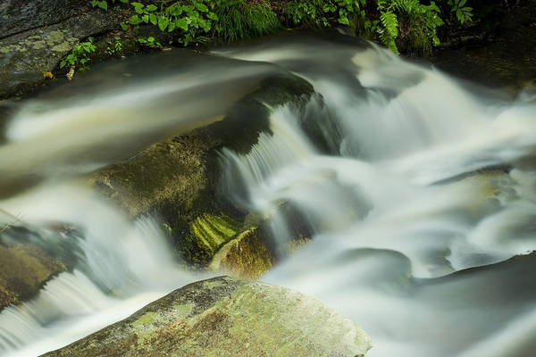 Photograph - Stickney Brook Flowing by Tom Singleton