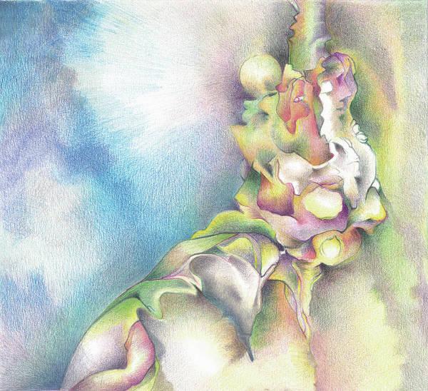 Organic Drawing - Still A Blue Sky by Bodhi