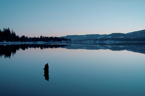 Photograph - Still Blue by Troy Stapek