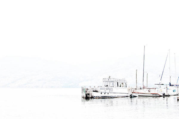 Photograph - Still Harbour by David Emond