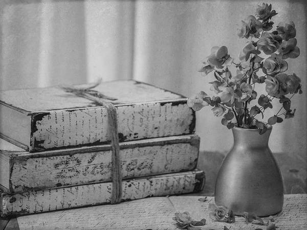 Photograph - Still Life 8264 In Black And White by Teresa Wilson