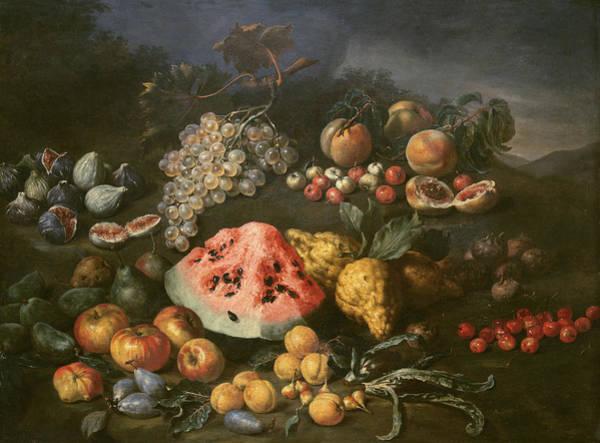 Water-melon Wall Art - Painting - Still Life by Bartolomeo Bimbi