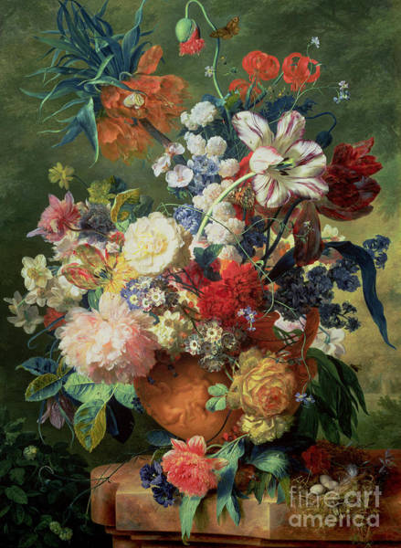 Tulip Bloom Painting - Still Life Of Flowers And A Bird's Nest On A Pedestal  by Jan van Huysum