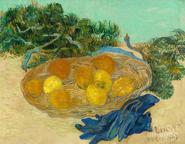 Wall Art - Painting - Still Life Of Oranges And Lemons With Blue Gloves, 1889 by Vincent Van Gogh