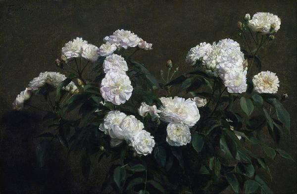 Painting - Still Life Of White Roses by Henri Fantin-Latour
