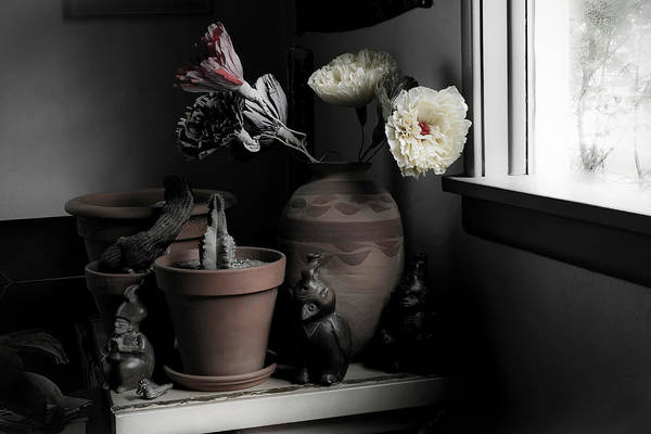 Photograph - Still Life With Cactus by Lee Santa