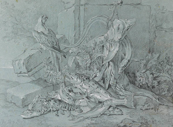 Jeans Drawing - Still-life With Fish And Parrot by Jean-Baptiste Oudry