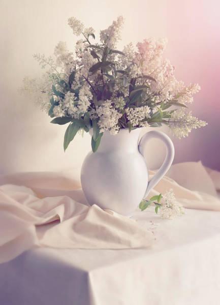 Photograph - Still Life With Fresh Privet Flowers by Jaroslaw Blaminsky