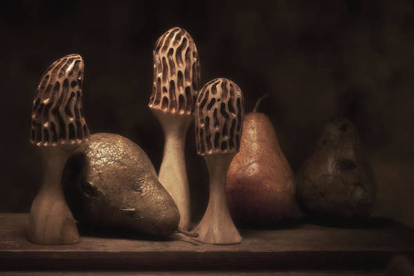 Carve Photograph - Still Life With Mushrooms And Pears II by Tom Mc Nemar