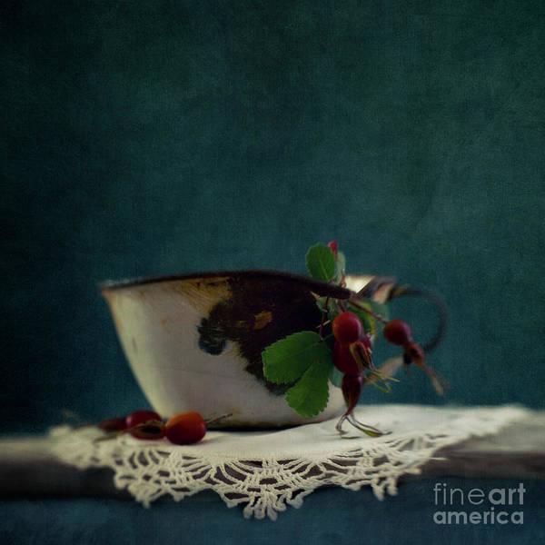 Enamel Wall Art - Photograph - Still Life With Rosehips by Priska Wettstein