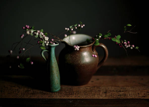 Green Berry Photograph - Still Life With Stoneware  by Nailia Schwarz