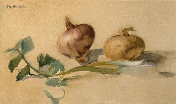 Gonzales Wall Art - Drawing - Still Life With Two Onions by Eva Gonzales