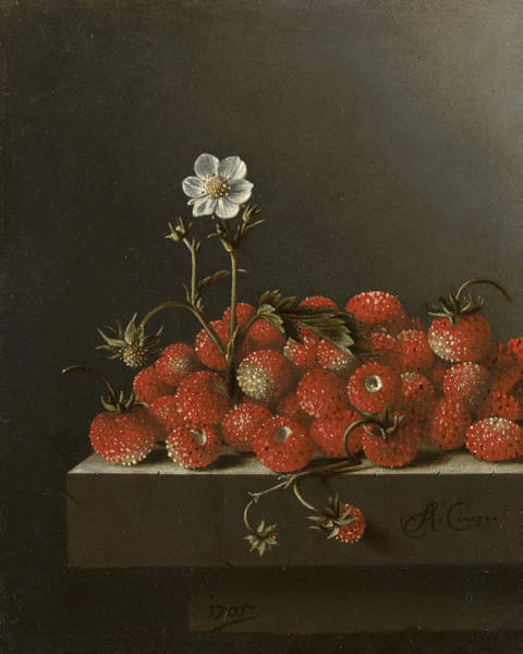 Beauty Wall Art - Painting - Still Life With Wild Strawberries by Adriaen Coorte