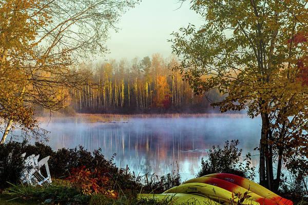Photograph - Still Morning Birch Tree Reflection by Jeff Folger