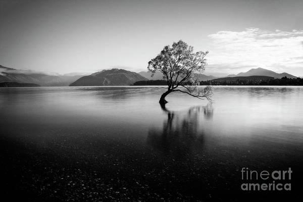 Photograph - Still Morning by Scott Kemper