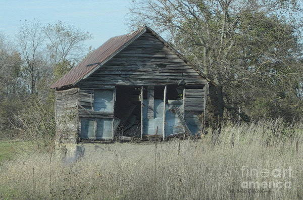 Photograph - Still Standing by Kathie Chicoine