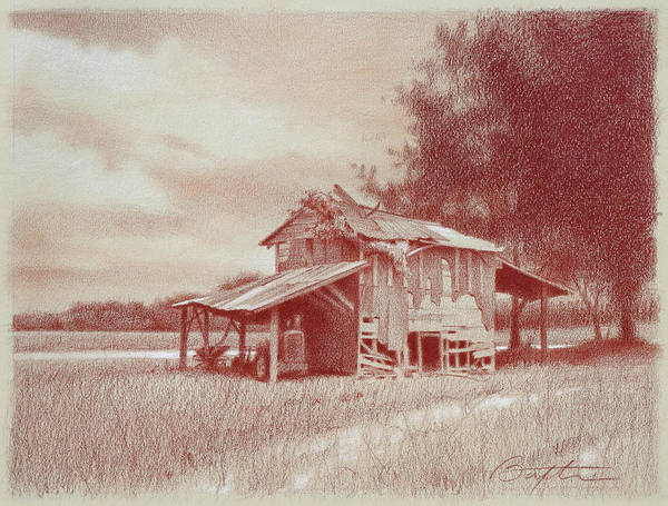 Tobacco Wall Art - Drawing - Still Standing by Todd Baxter
